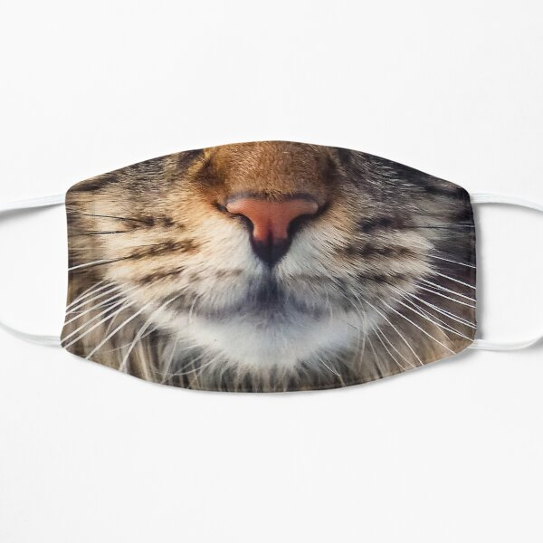Maincoon Cat Face Protective Mask Mask