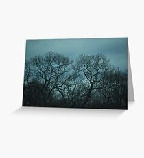 stainless steel sunset Greeting Card