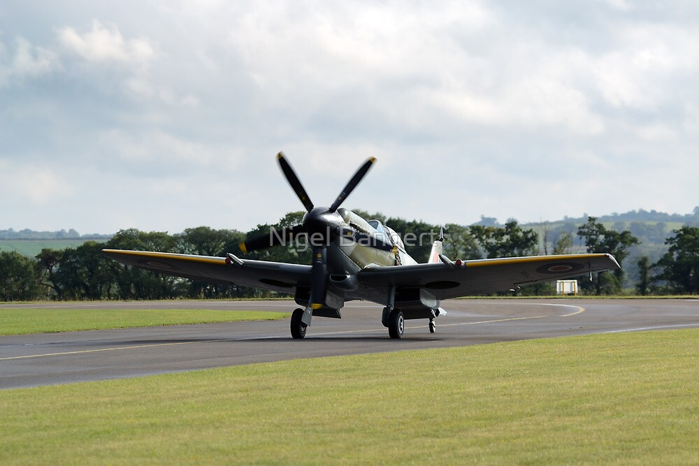 Supermarine Spitfire MKV by Nigel Bangert