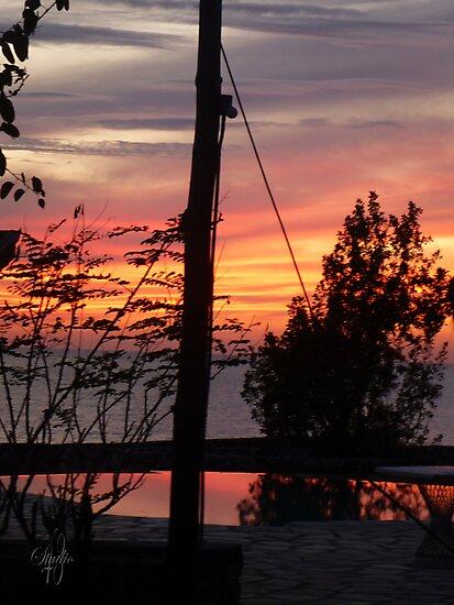 January 7, 2012 by westcountyweste