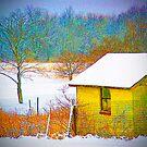 Vivid Snowfall by Sandra Lee Woods