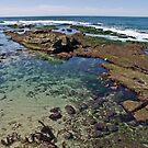 La Jolla Tide Pools by JThill
