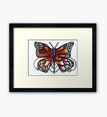 Lepidoptera  Framed Print