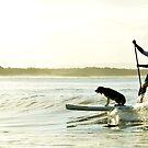 Dog Surf by STEPHANIE STENGEL | STELONATURE PHOTOGRAPHY