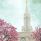Bountiful, LDS Temple, Spring by Ryan Houston