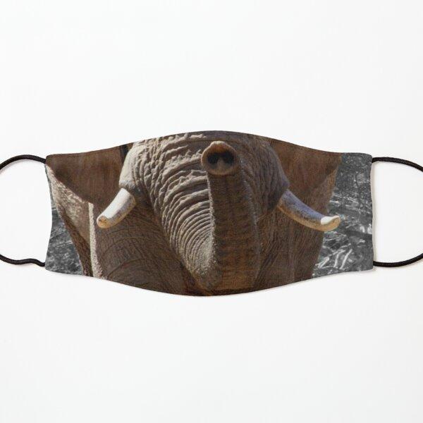 Elephant muzzle fun face mask Kids Mask