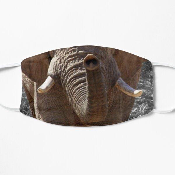Elephant muzzle fun face mask Flat Mask