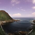 Storms River Suspension Bridge by howieb101