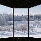 A Cold, Starry Winter's Night by DigitallyStill