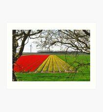 Spring on Flakkee 3 Art Print
