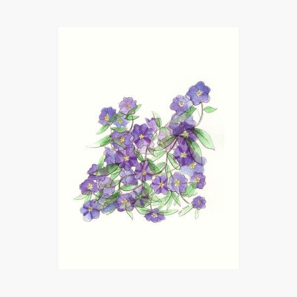 Purple Flowers on Anza Art Print
