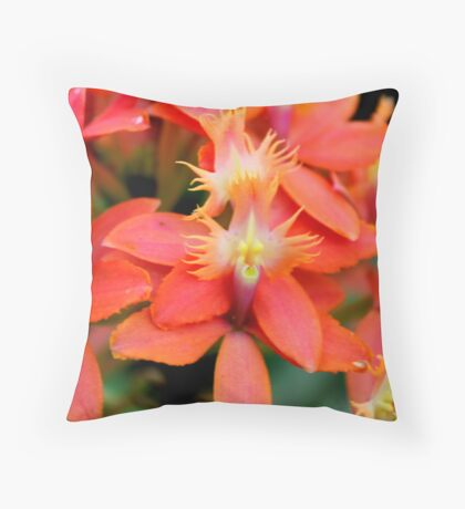 Orchid 20 Throw Pillow