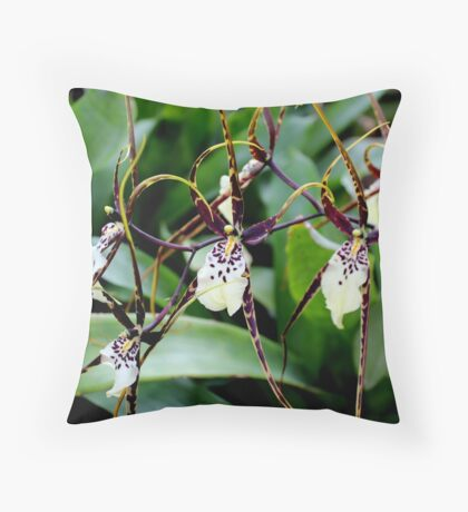 Orchid 41 Throw Pillow