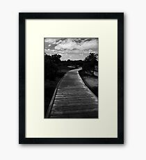 The Meandering Path Framed Print