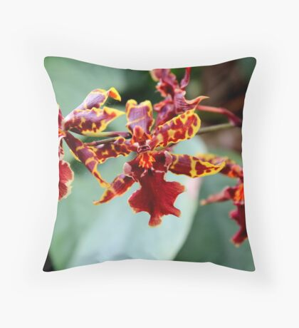 Orchid 44 Throw Pillow
