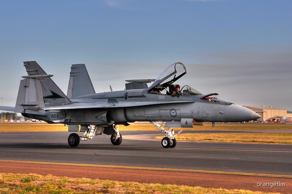 F/A-18 Hornet, A21-4, 77 Squadron, RAAF Williamtown by Tim Pruyn