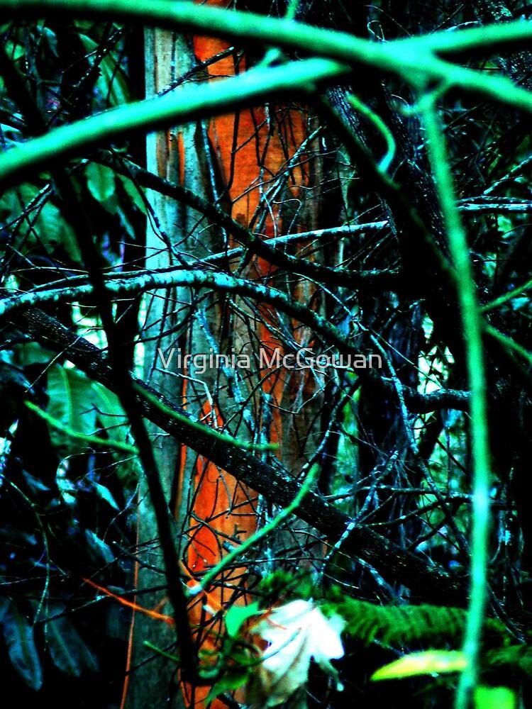 Tree by Virginia McGowan
