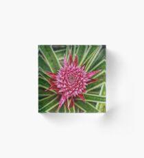 Fresh Pineapple Acrylic Block