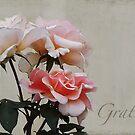 Gratitude by Eve Parry