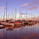 Sunrise at Scarborough Boat Harbour. Brisbane, Queensland, Australia. (3)) by Ralph de Zilva