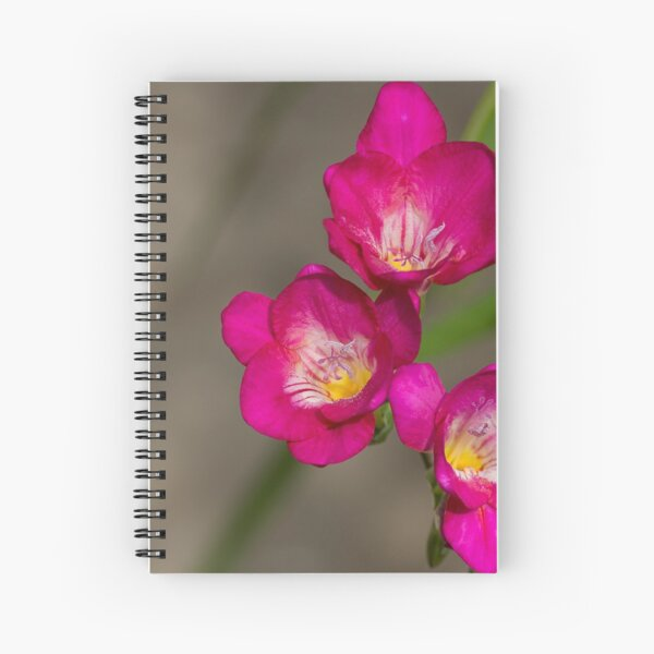 Fragrant Freesias Spiral Notebook