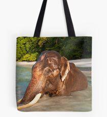 Rajan Revisited Tote Bag