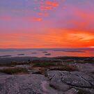 Cadillac Mountain Sunrise  - Acadia by Stephen Vecchiotti