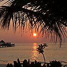 Thudufushi, Maldives: a framed Maldivian Sunset by presbi