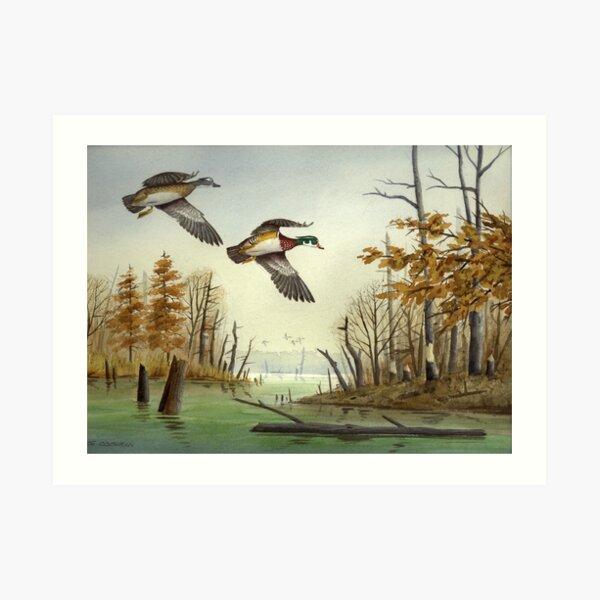 Paired Up: Wood Ducks Art Print
