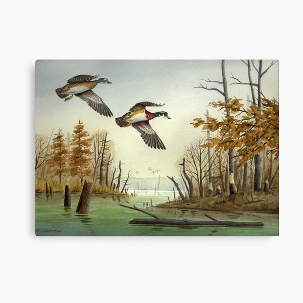 Paired Up: Wood Ducks Canvas Print