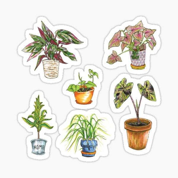 Houseplant Sticker Pack: Greenhouse A Sticker