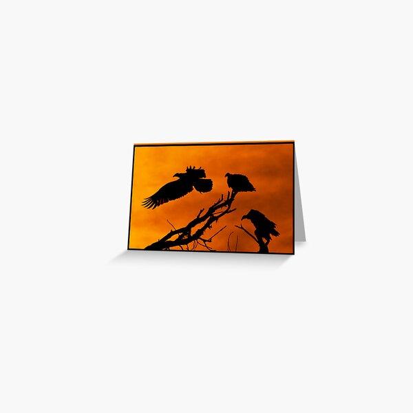 Vultures Roosting @ Sundown Greeting Card
