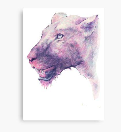 Multicoloured Lioness  Canvas Print