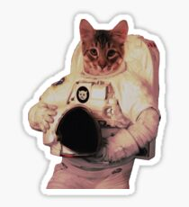 Cat Astronaut Sticker