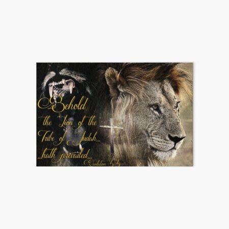 Behold, The Lion Of The Tribe Of Judah Art Board Print