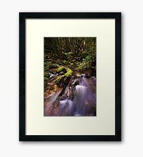 Mclarens Moss Framed Print