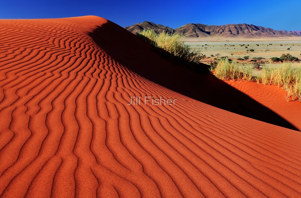 Sand Ripples by Jill Fisher