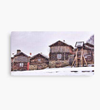 The art of snow Canvas Print