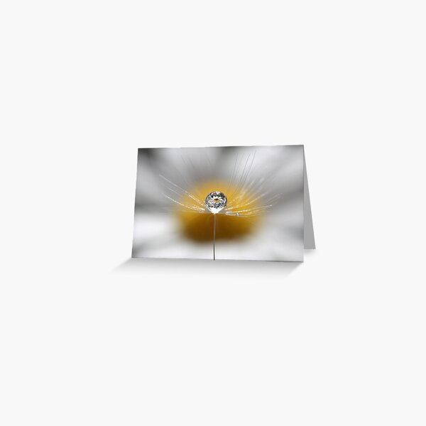 A drop full of daisies Greeting Card