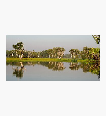 Yellow Water Billabong  Photographic Print