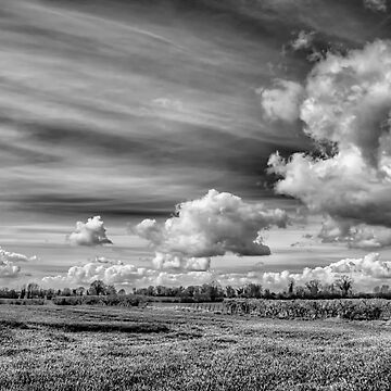 Catching Clouds (black and white) by InspiraImage