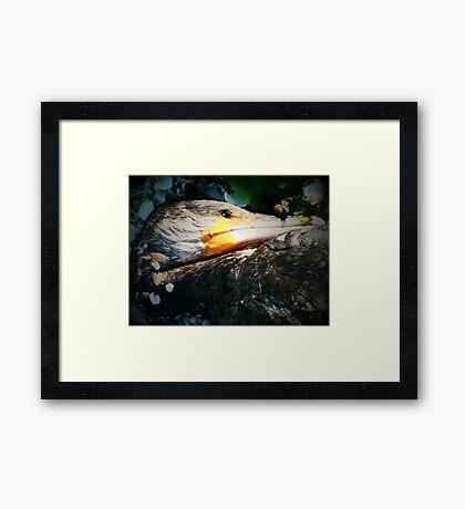 Divine Light #12 Framed Print