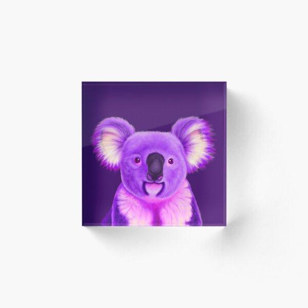 Koala morada Bloque acrílico