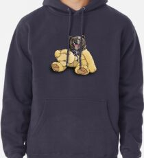 Soft Inside Pullover Hoodie