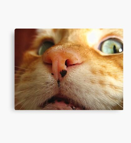First thing I see when I wake up Canvas Print