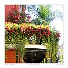 Flowering Balcony by Sandra Russell