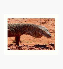Perentie Lizard - Central Australia Art Print