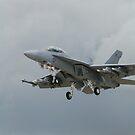 Super Hornet - Grey on Grey by Barrie Woodward