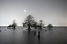 Sunken Island by Starlight by Troy Dalmasso