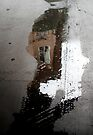 puddle face, can I look inside your window? von Marianna Tankelevich